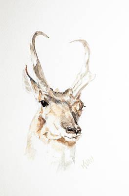 Painting - Antelope by Karen Rispin