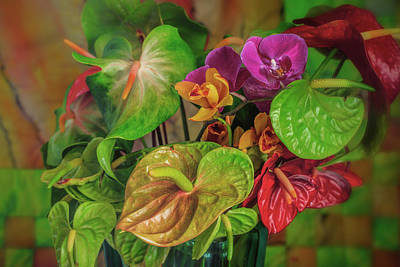 Photograph - Anthurium Riot by Jade Moon