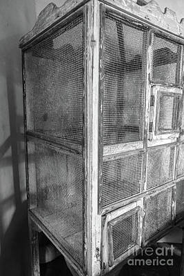 Photograph - Antique Bird Cage by Edward Fielding