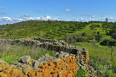 Antique Stone Wall Of An Old Farm Art Print