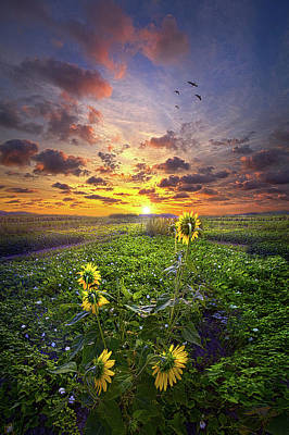 Art Print featuring the photograph Any Time At All by Phil Koch