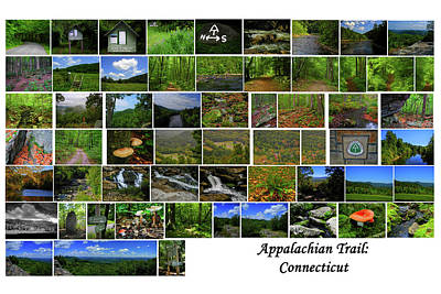 Photograph - Appalachian Trail Connecticut by Raymond Salani III