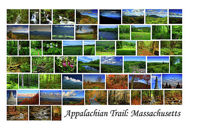 Photograph - Appalachian Trail Massachusetts by Raymond Salani III