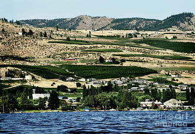 Photograph - Apple Farming On The Hills Of Wenatchee by Mae Wertz
