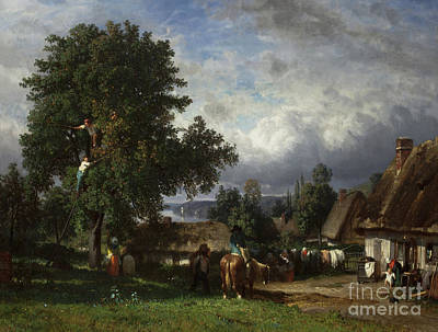 Painting - Apple Harvest In Normandy by Constant-Emile Troyon