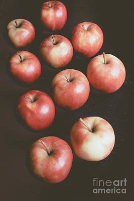 Photograph - Apple Knolling Retro by Marina Usmanskaya