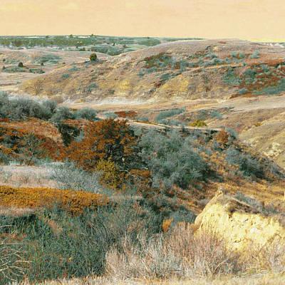 Photograph - April Domain In Dakota West by Cris Fulton
