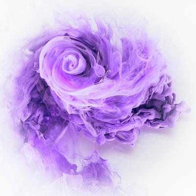 Photograph - Aqueous Bloom - Amethyst by David Thompson