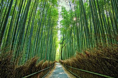 Photograph - Arashiyama Morning by Ian Robert Knight