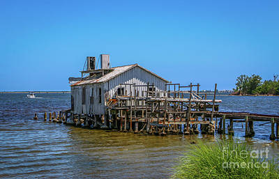 Photograph - Archie's Fish House #2 by Tom Claud