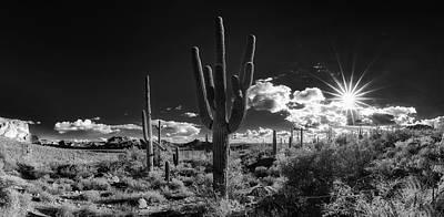 Arizona Desert Sky Original
