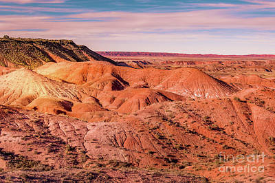 Photograph - Arizona Painted Desert #1 by Blake Webster