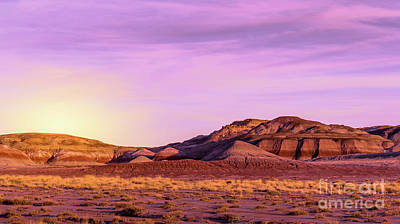 Photograph - Arizona Painted Desert #3 by Blake Webster
