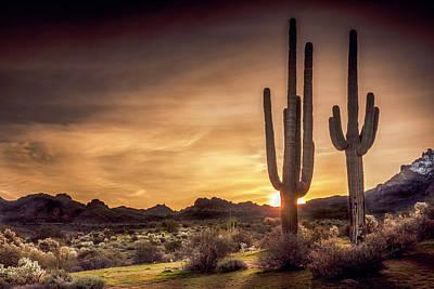 Arizona Sunrise Black And White Original