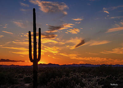 Photograph - Arizona Sunset by Tim Kathka