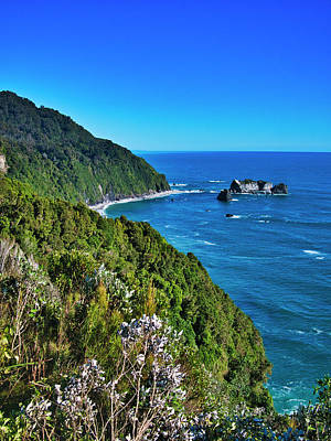 Photograph - Arnott Point  New Zealand by Steven Ralser