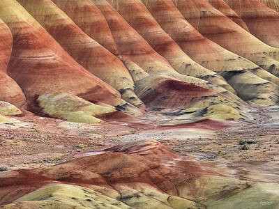 Photograph - Art And Color In Nature by Leland D Howard