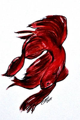 Painting - Art Doodle No.36 Betta Fish by Clyde J Kell