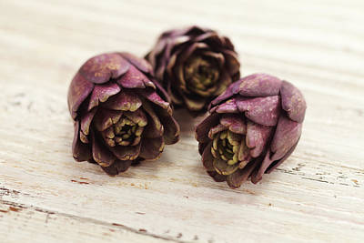 Photograph - Artichokes by James And James
