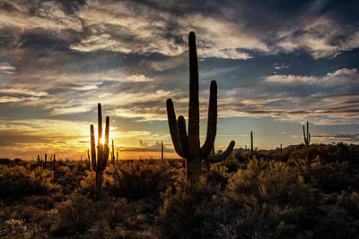 Photograph - As The Sun Sets On Arizona  by Saija Lehtonen