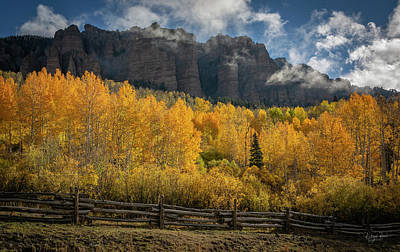 Photograph - Aspen Bullion  by Richard Raul Photography
