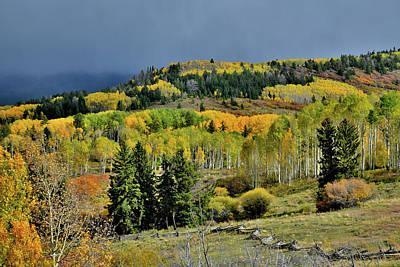 Photograph - Aspen Groves Along Last Dollar Road by Ray Mathis