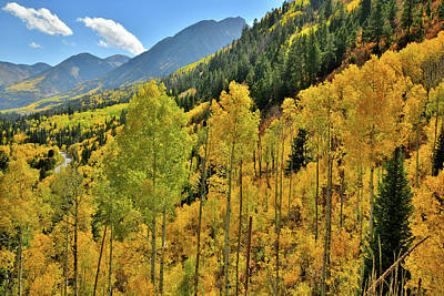Photograph - Aspens Glow Along The Ascent To Mcclure Pass by Ray Mathis