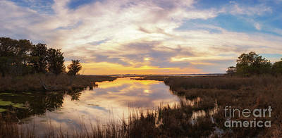 Photograph - Assateague Marsh Sunset  by Michael Ver Sprill