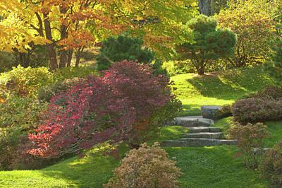 Photograph - Asticou Azalea Garden  by Paul Mangold