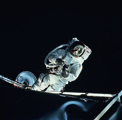 Photograph - Astronaut In Space Suit by Sightseeing Archive