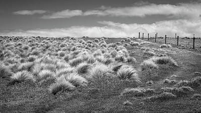 Studio Grafika Vintage Posters - At Slope Point New Zealand BW by Joan Carroll
