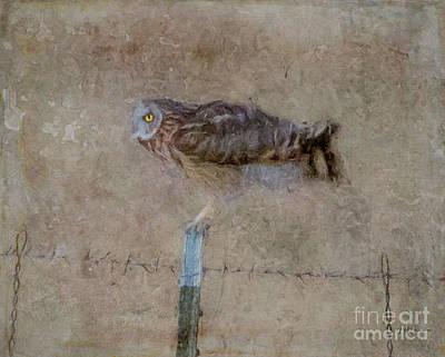 Digital Art - At the Edge of Night by Lyndie Mason Warner