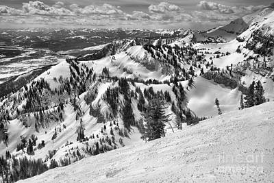 Photograph - At The Jackson Hole Treeline Black And White by Adam Jewell