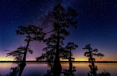 Photograph - Atchafalaya Basin Under The Miky Way by Andy Crawford