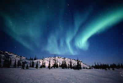 Photograph - Aurora Borealis Northern Lights Above by Wayne R Bilenduke