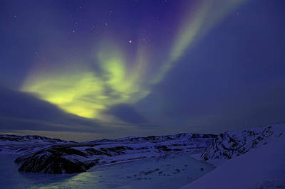 Photograph - Aurora Borealis Or Northern Lights Over by All Canada Photos Rm