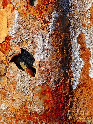 Photograph - Aussie Galvanised Iron #23 by Lexa Harpell