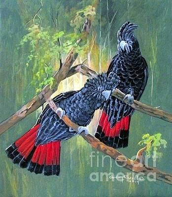 Australian Red-tail Black Cockatoos Original