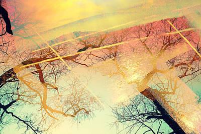 Digital Art - Authenticity by Payet Emmanuel