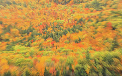 Photograph - Autumn Abstract Blur by Dan Sproul