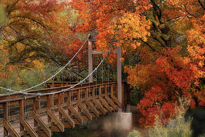 Photograph - Autumn Across The Bridge  by Saija Lehtonen
