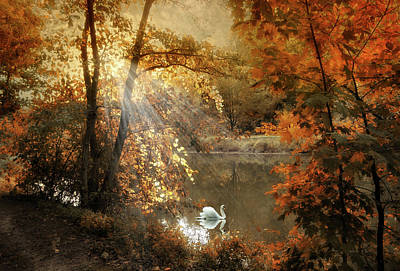 Photograph - Autumn Afterglow by Jessica Jenney
