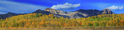 Royalty-Free and Rights-Managed Images - Autumn Afternoon Below the Sneffels Range by Bridget Calip