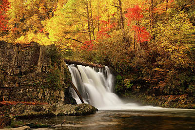 Photograph - Autumn At Abrams Falls by Greg Norrell
