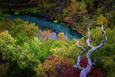 Photograph - Autumn At Ha Ha Tonka State Park by Allin Sorenson