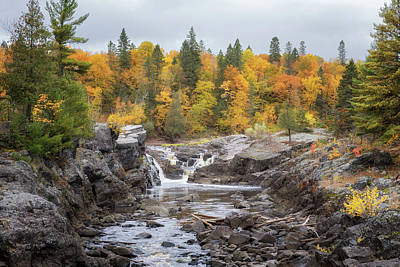 Photograph - Autumn At Jay Cooke State Park by Susan Rissi Tregoning
