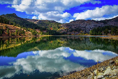 Photograph - Autumn At Red Lake by Steph Gabler