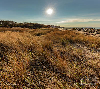 Photograph - Autumn At The Beach Cape Cod by Michelle Constantine