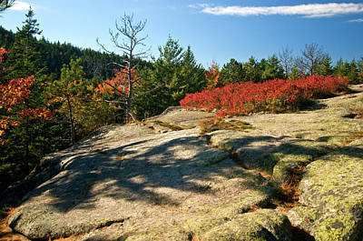 Photograph - Autumn At The Top by Paul Mangold