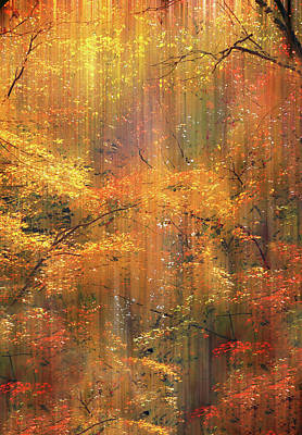 Photograph - Autumn Bling by Jessica Jenney